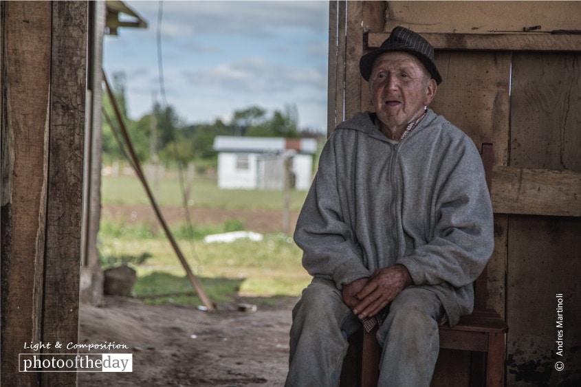 Old Age in the Field, by Andres Martinoli