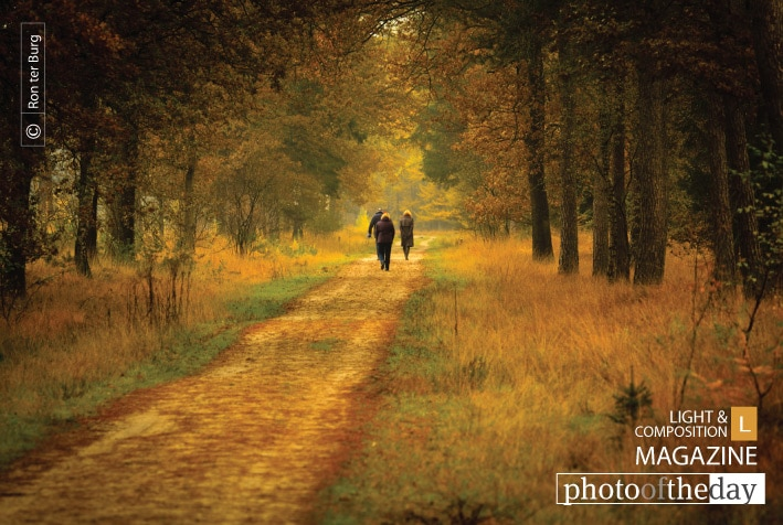 Autumn Walk in the Park, by Ron ter Burg