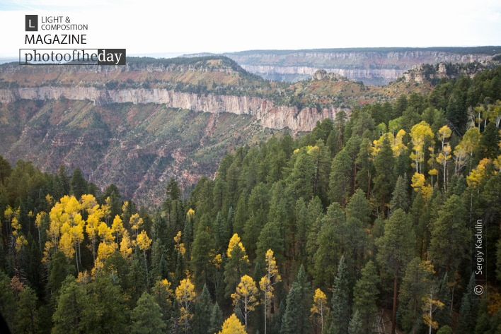 Autumn Colors of Grand Canyon, by Sergiy Kadulin