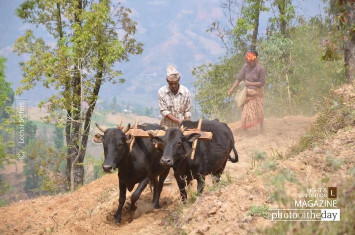 Farmers in Nepal, by Lothar Seifert