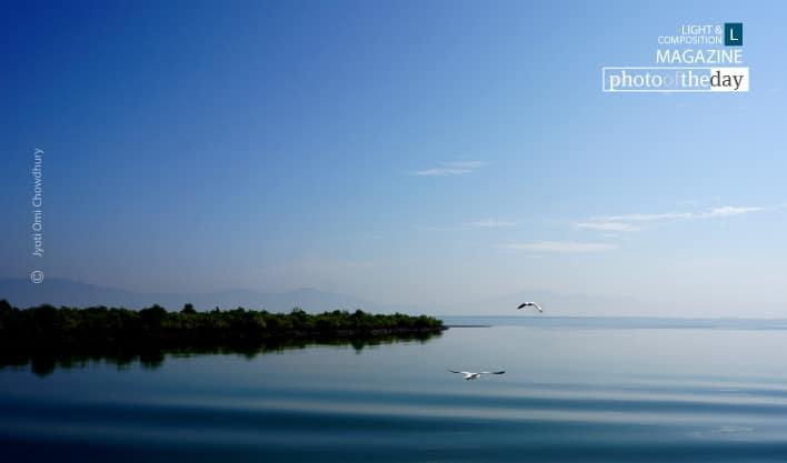Two Birds, by Jyoti Omi Chowdhury