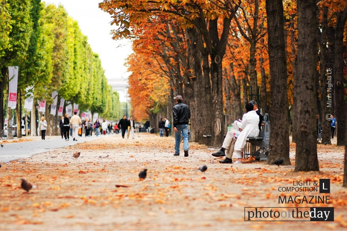 Autumn in Paris, by Minh Nghia Le