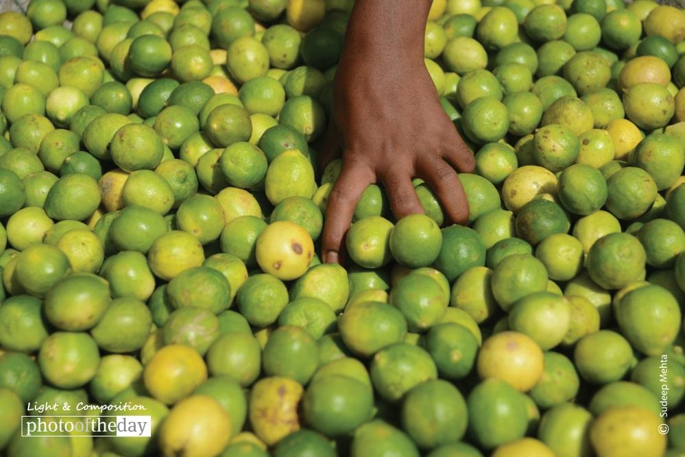 Lemons, by Sudeep Mehta