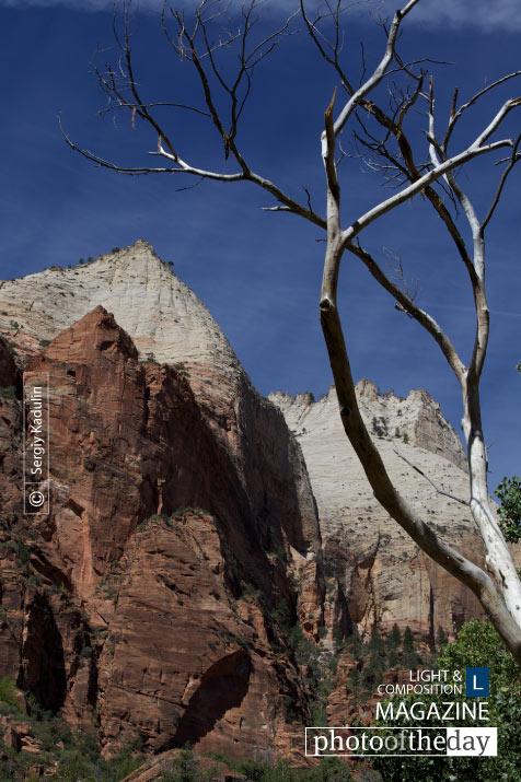 Zion National Park, by Sergiy Kadulin