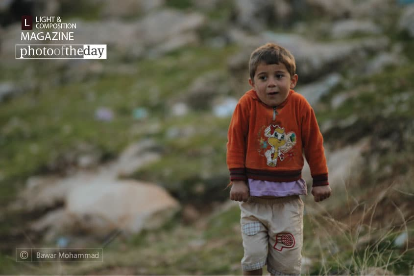 Shivering Child, by Bawar Mohammad