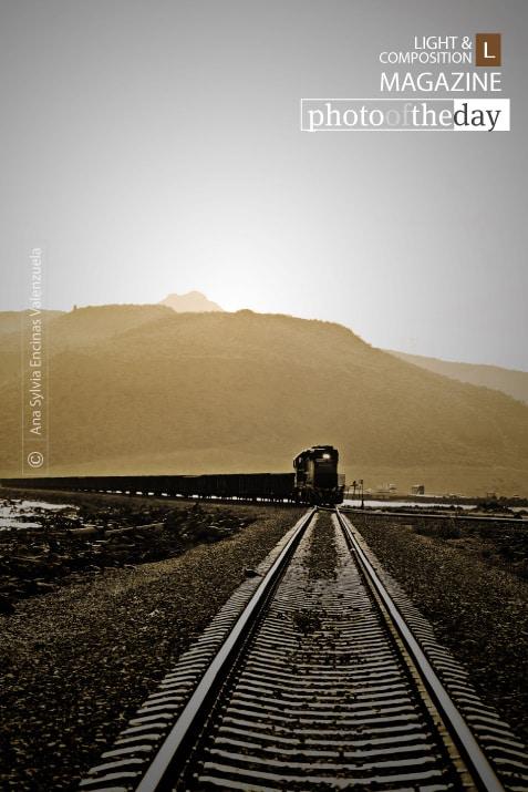 El Tren by Ana Sylvia Encinas