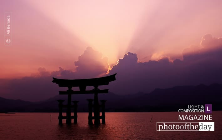 In love with Miyajima, by Ali Berrada