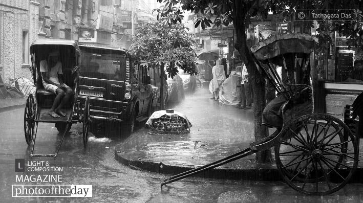 Rainy Day, by Tathagata Das