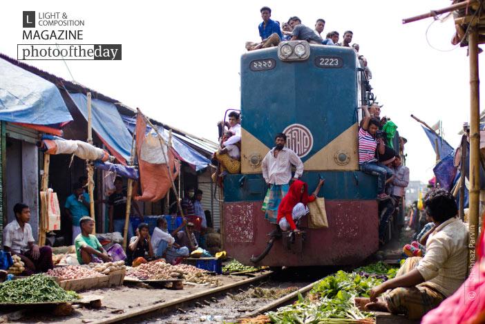 Risky Life, by Shahnaz Parvin