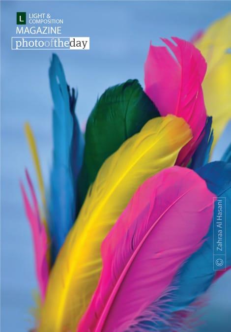 Color Revolution, by Zahraa Al Hassani