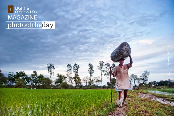 Village Life by Prasanta Singha