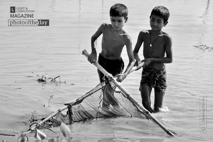 Fish Hunters, by Shahnaz Parvin