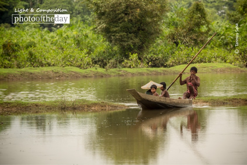 Searching for Fish, by Tanmoy Saha