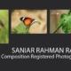 Saniar Rahman Rahul