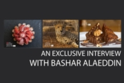 An Exclusive Interview with Bashar Alaeddin