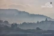 A Foggy Morning, by Achintya Guchhait