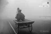 Going through the Mist, by Shahnaz Parvin