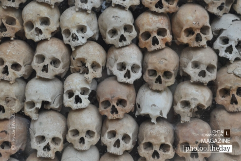 Killing Fields, by Ryszard Wierzbicki