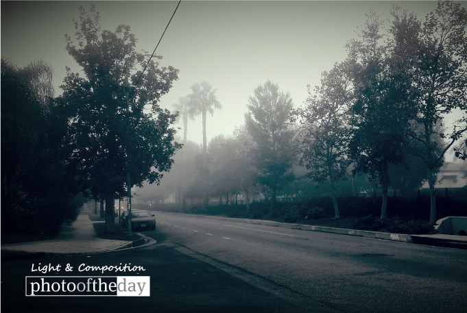 When It's Cloudy, by Shariful Alam