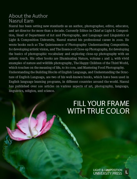 Fill Your Frame with True Color