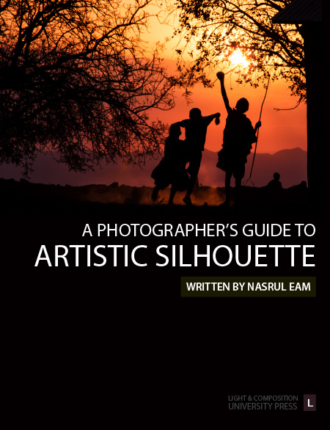 A Photographer's Guide to Artistic Silhouette Cover