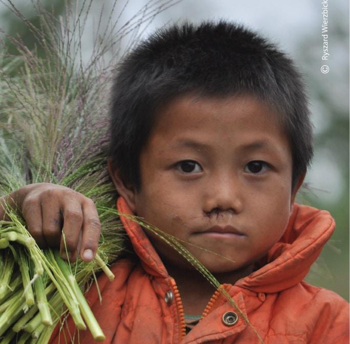 Harvesting Boy, by Ryszard Wierzbicki