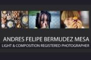 Andres Felipe Bermudez Mesa