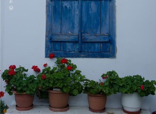 Blue Window, by Thomas Lianos