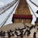 Wisdom Eyes and Pigeons, by Ryszard Wierzbicki