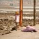 Mumbai Beggar Girl, by Kristian Bertel