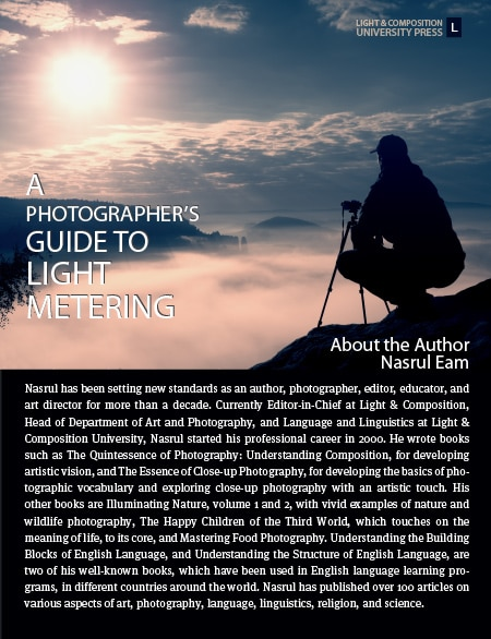A Photographer's Guide to Light Metering Back Cover