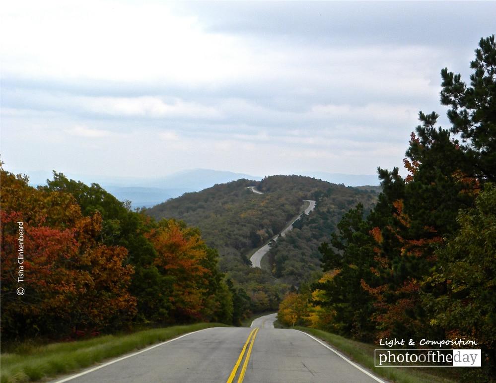 Talimena Drive in the Fall, by Tisha Clinkenbeard