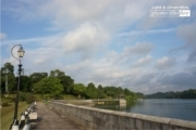 MacRitchie Reservoir Park, by Siew Bee Lim