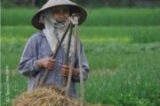 A Vietnamese Farmer, by Ryszard Wierzbicki