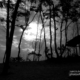 In a Cloudy Evening, by Liton Chowdhury