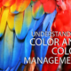 Understanding Color and Color Management