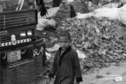 An Angry Boy, by Jabbar Jamil