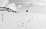 Footprints in the Snow by Payman Mollaie