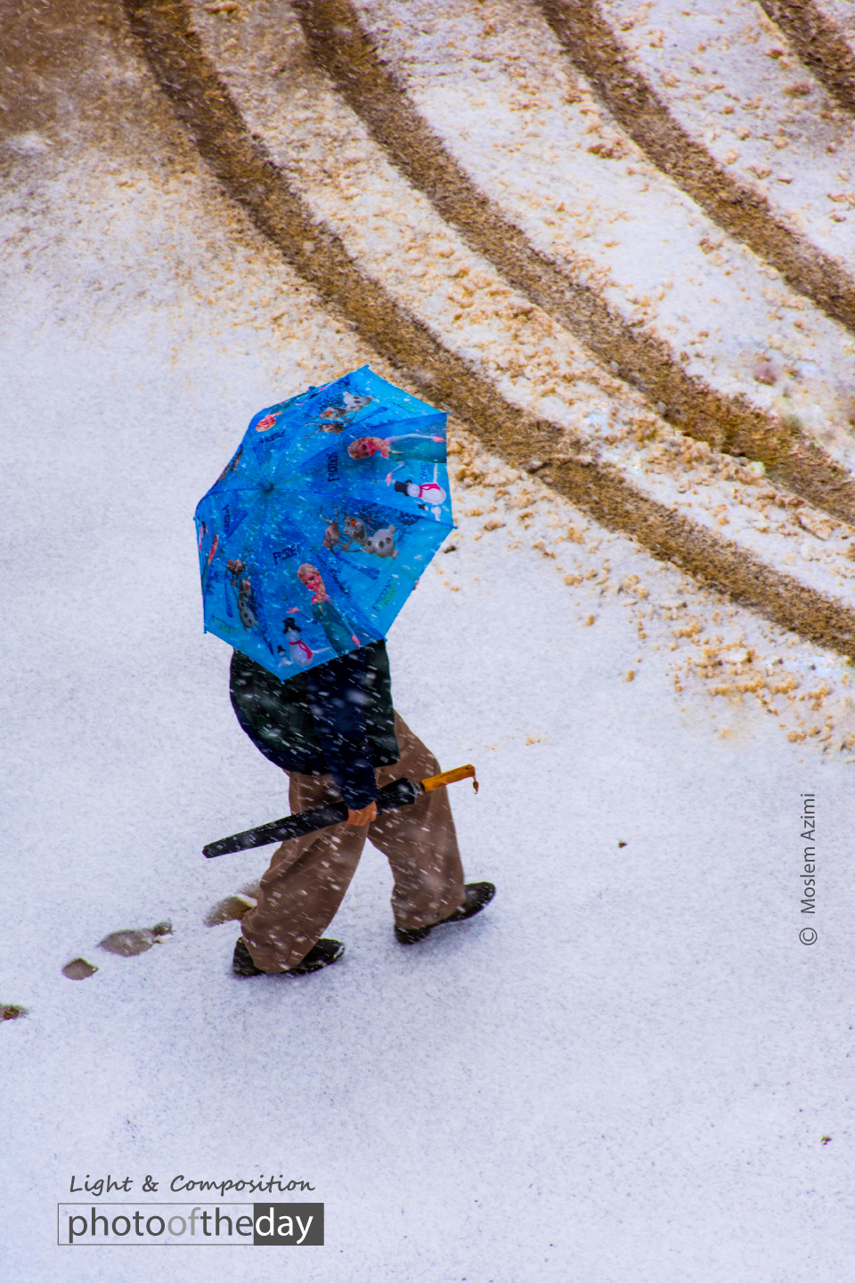 Snow and Colors by Moslem Azimi