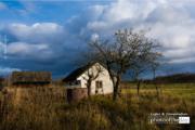 The Rain by Rafal Ostapiuk