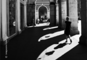 Light and Shadow by Siragusano Dylan