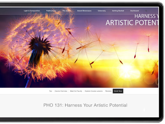 Harnessing Your Artistic Potential