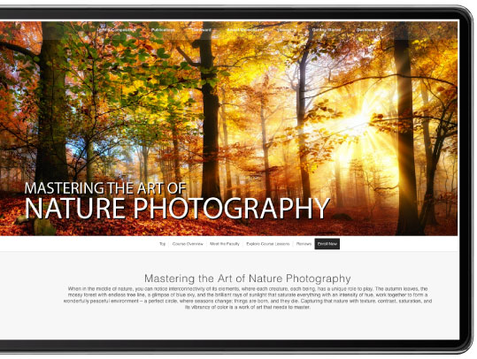 Mastering the Art of Nature Photography