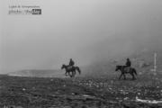 Ride a Horse by Fidan Nazim Qizi