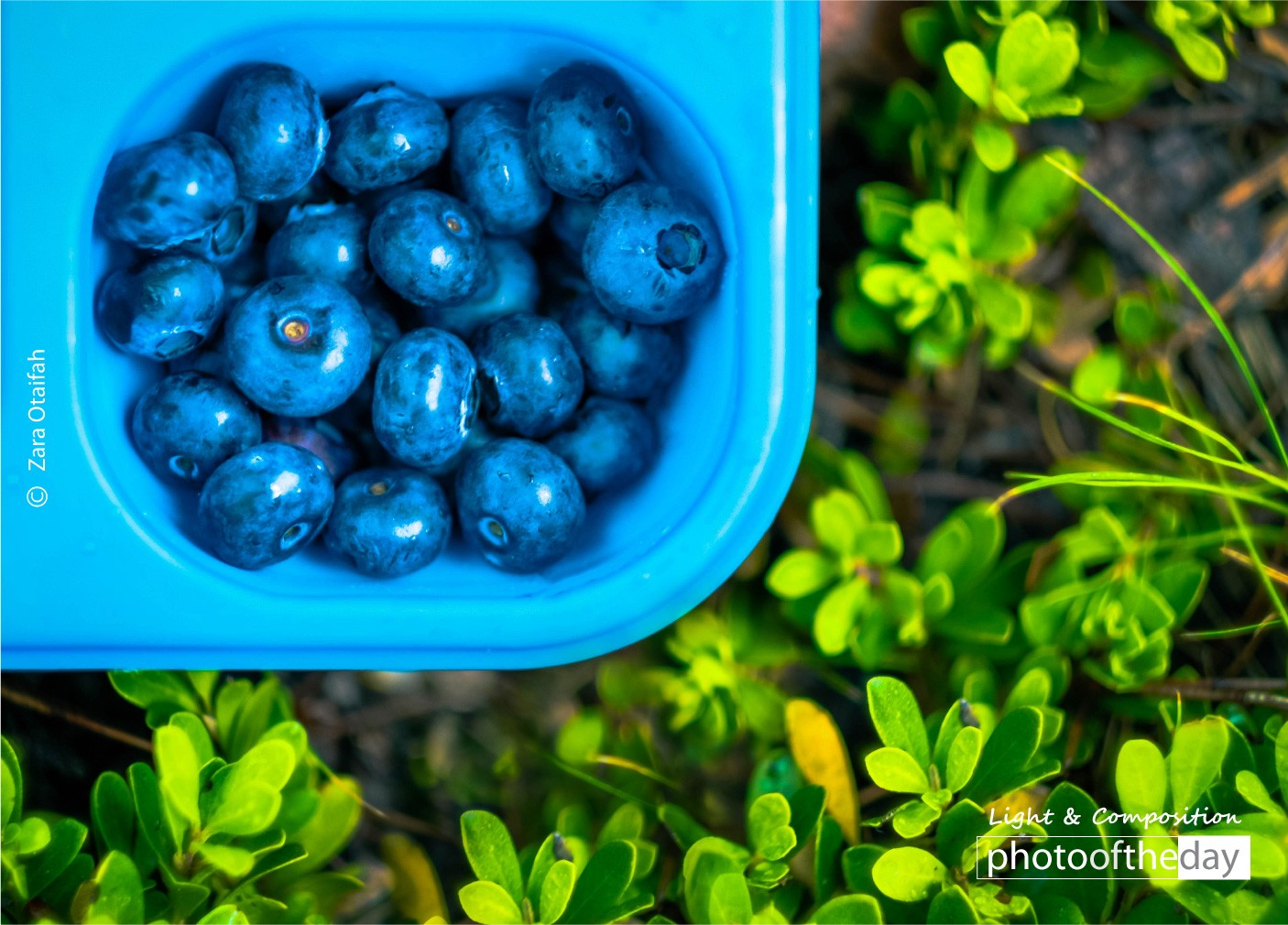 Colorful Breakfast Break by Zara Otaifah