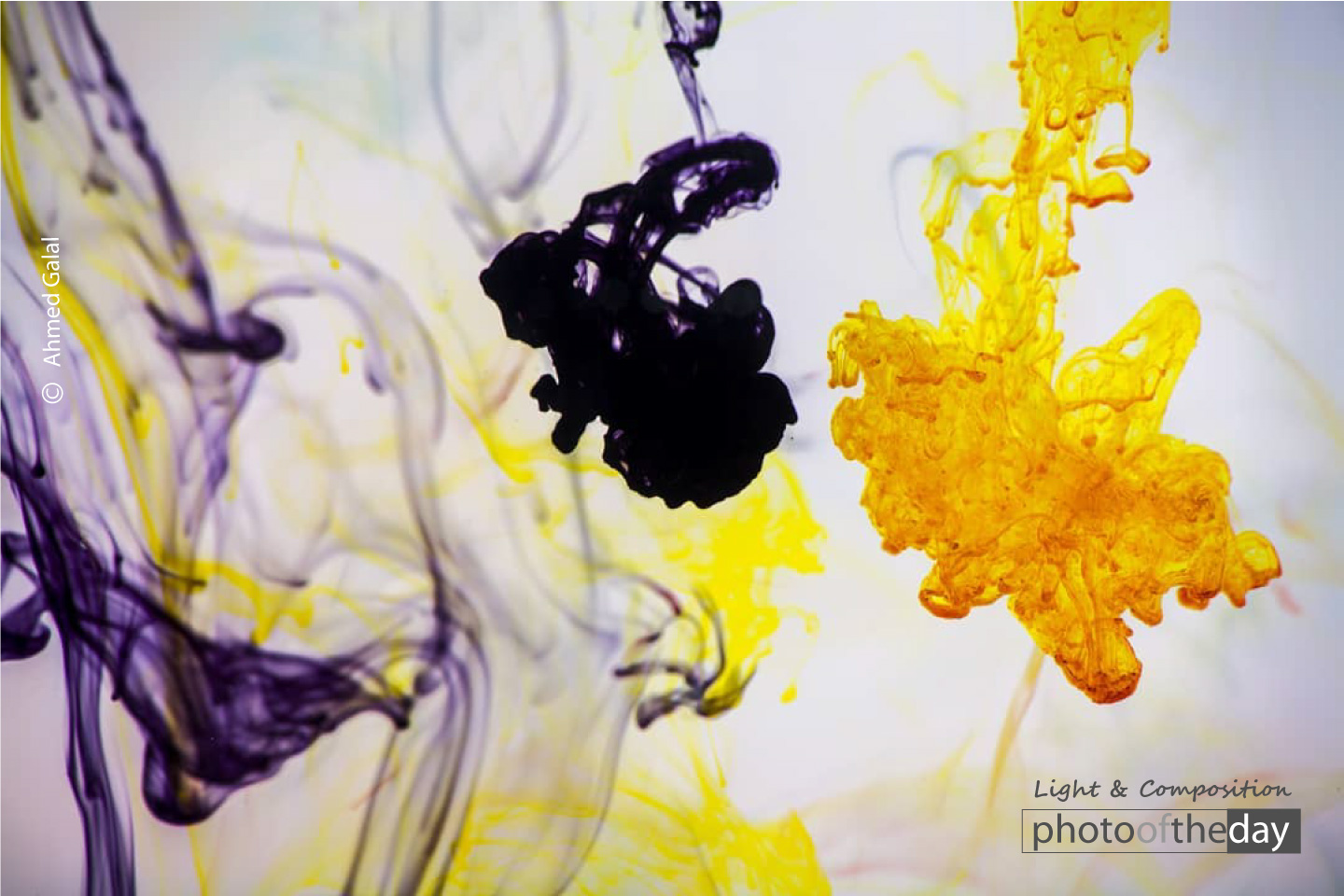 Ink In Water by Ahmed Galal