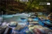 Springtime Flow by Silvia Bukovac Gasevic