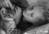 The Boy and a Kitten by Anastasia Markus